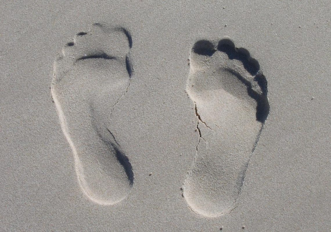 Podiatry Clinic Management Software